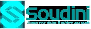 soudini.com